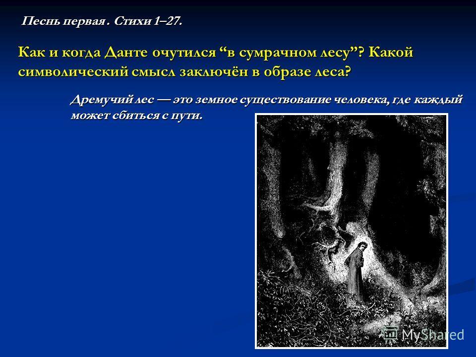 Песнь первая. Стихи 1–27. Как и когда Данте очутился в сумрачном лесу? Какой символический смысл заключён в образе леса? Дремучий лес это земное существование человека, где каждый может сбиться с пути.