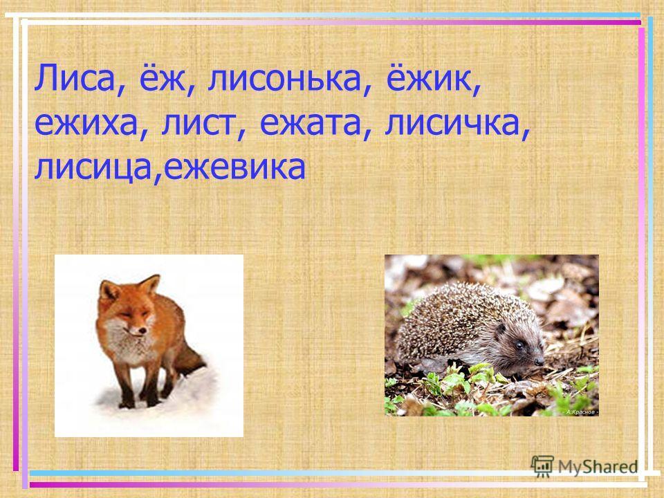 Лиса, ёж, лисонька, ёжик, ежиха, лист, ежата, лисичка, лисица,ежевика