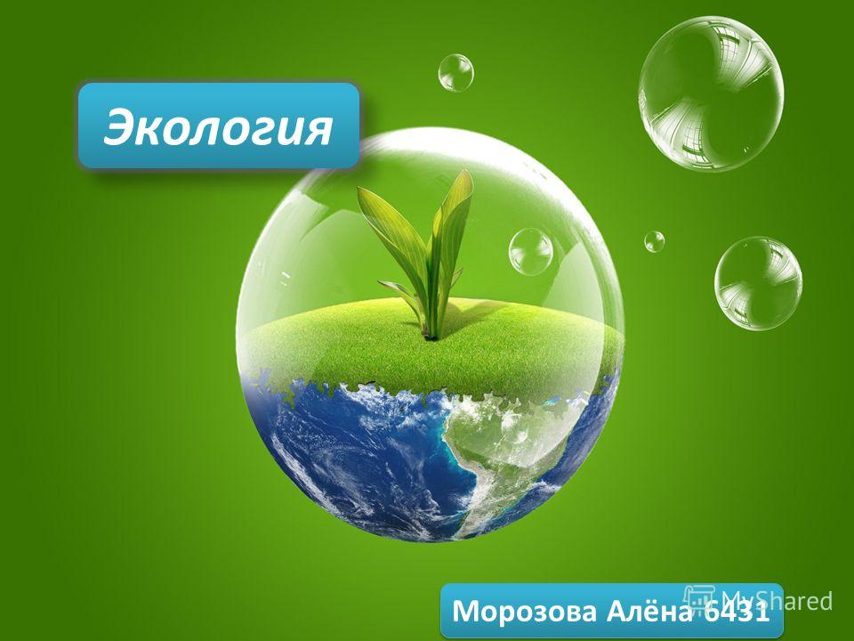 Экология Морозова Алёна 6431