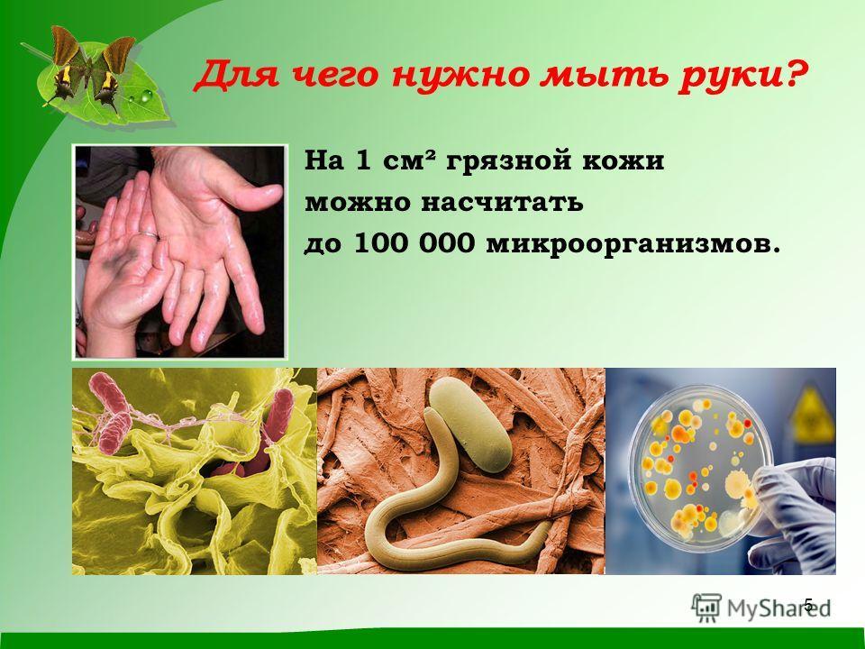 5 Для чего нужно мыть руки? На 1 см² грязной кожи можно насчитать до 100 000 микроорганизмов.