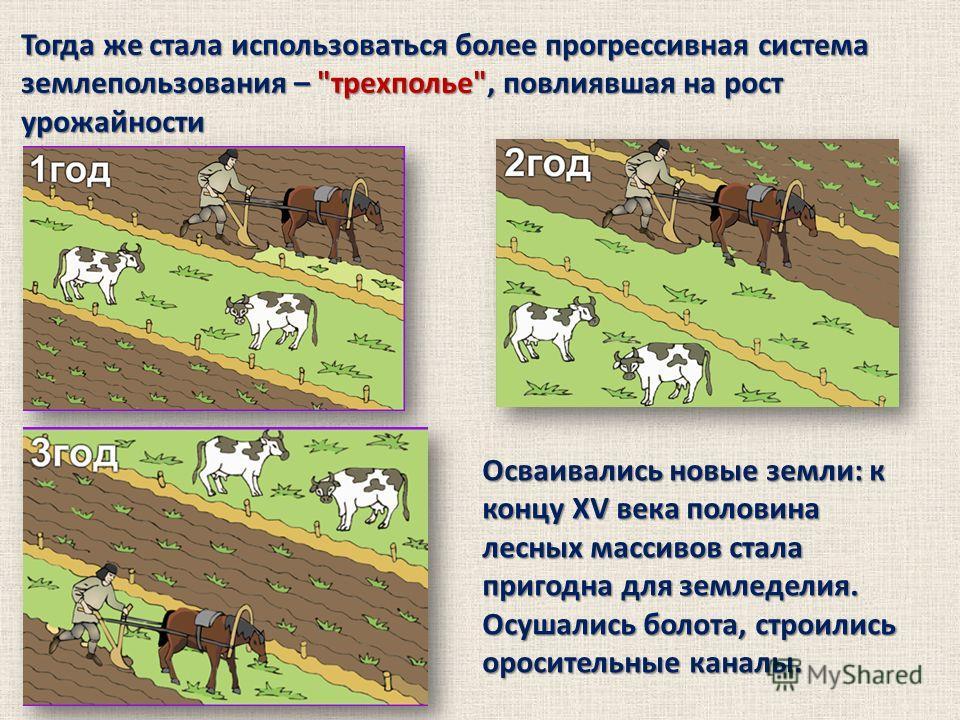 Тогда же стала использоваться более прогрессивная система землепользования –