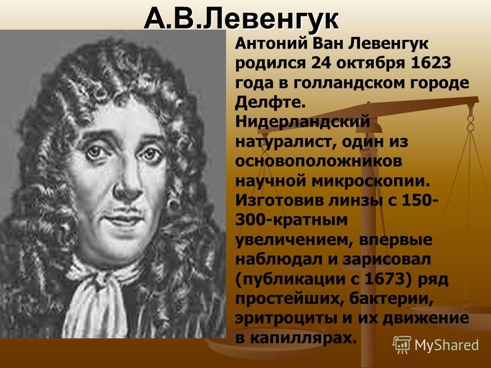 А.В.Левенгук Антоний Ван Левенгук родился 24 октября 1623 года в голландском городе Делфте. Нидерландский натуралист, один из основоположников научной микроскопии. Изготовив линзы с 150- 300-кратным увеличением, впервые наблюдал и зарисовал (публикац