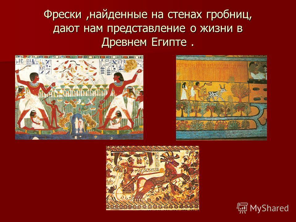 Фрески,найденные на стенах гробниц, дают нам представление о жизни в Древнем Египте.