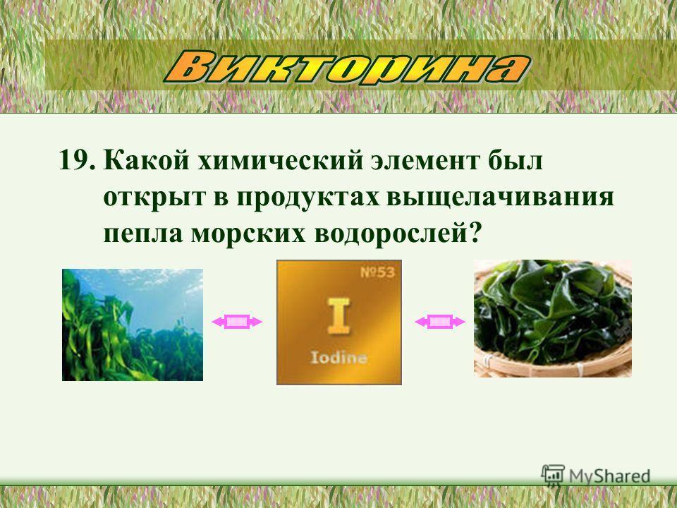 19. Какой химический элемент был открыт в продуктах выщелачивания пепла морских водорослей?