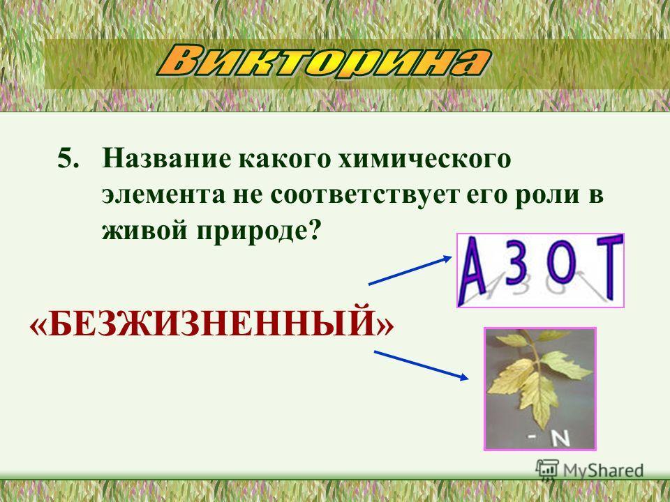 5. Название какого химического элемента не соответствует его роли в живой природе? «БЕЗЖИЗНЕННЫЙ»