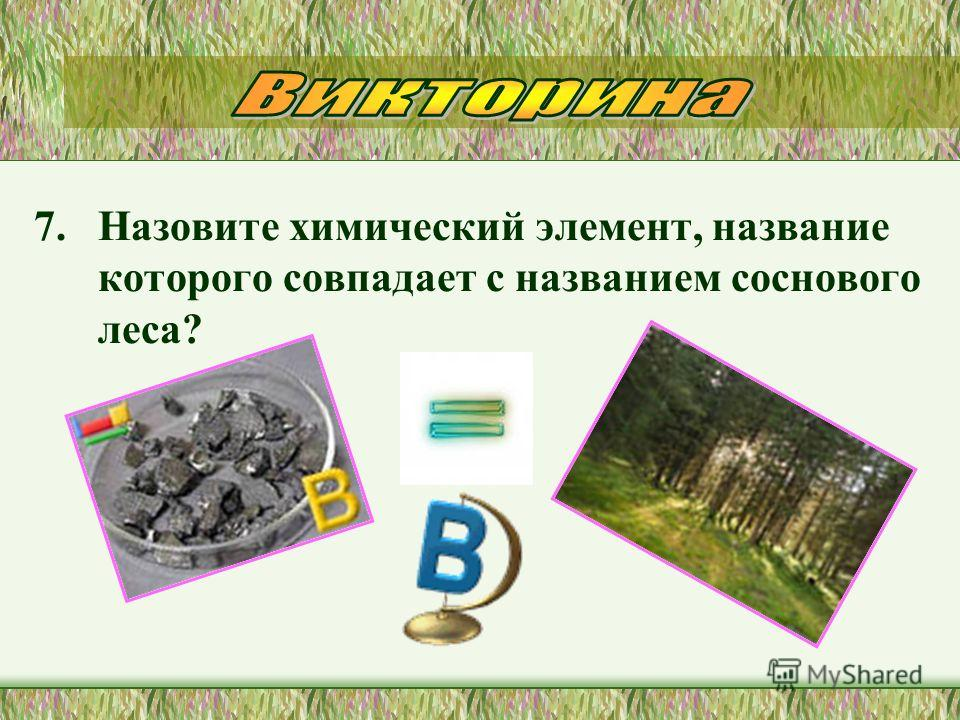 7. Назовите химический элемент, название которого совпадает с названием соснового леса?