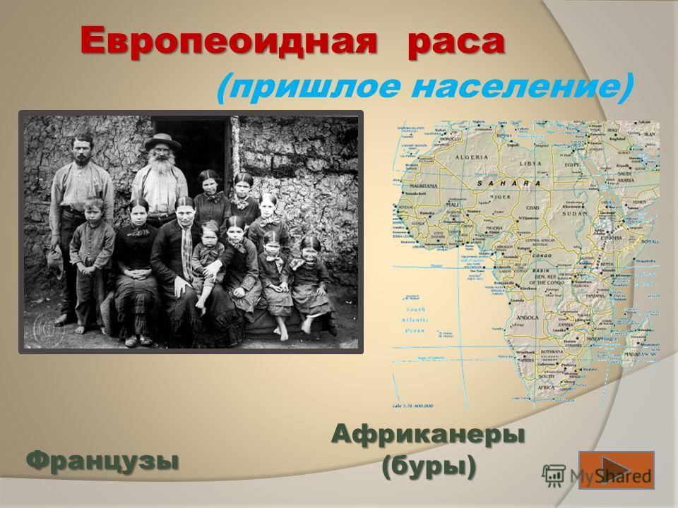 Европеоидная раса (пришлое население) Французы Африканеры(буры)
