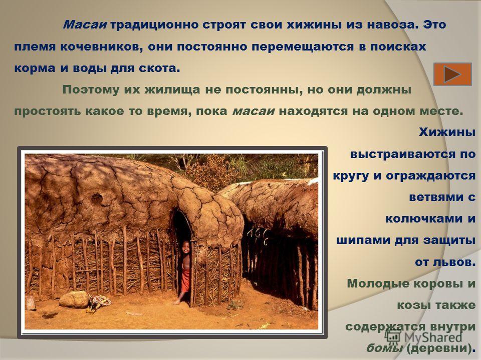 Хижины выстраиваются по кругу и ограждаются ветвями с колючками и шипами для защиты от львов. Молодые коровы и козы также содержатся внутри бомы (деревни). Масаи традиционно строят свои хижины из навоза. Это племя кочевников, они постоянно перемещают