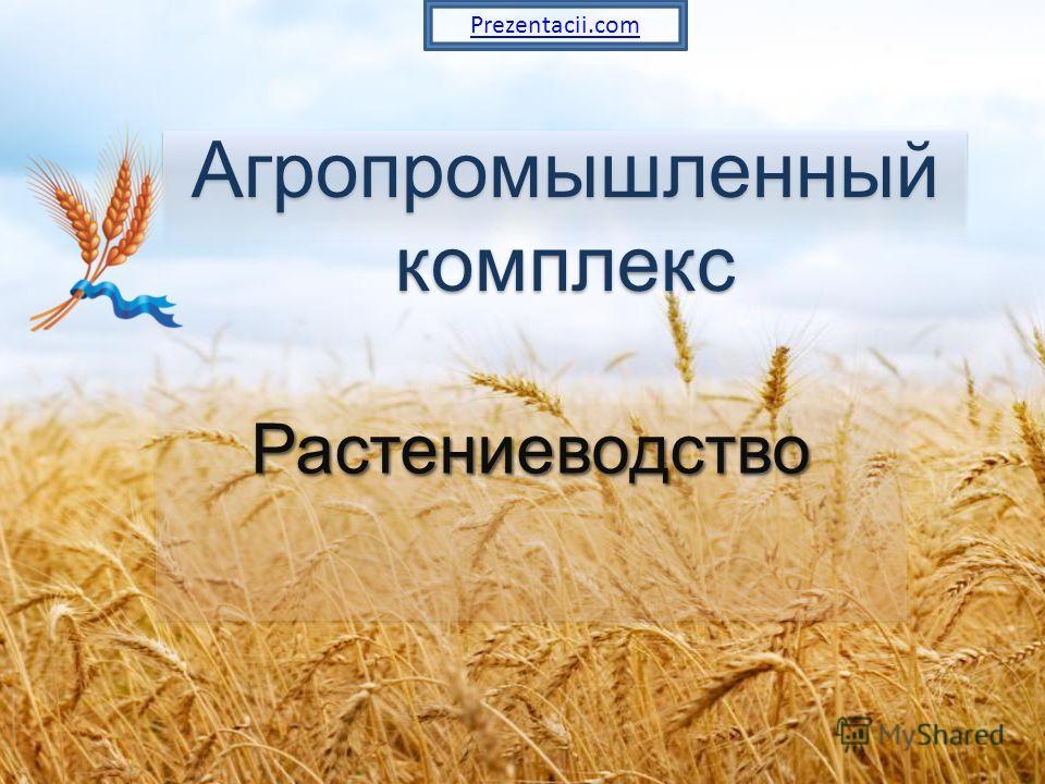 Агропромышленный комплекс Растениеводство Растениеводство Prezentacii.com
