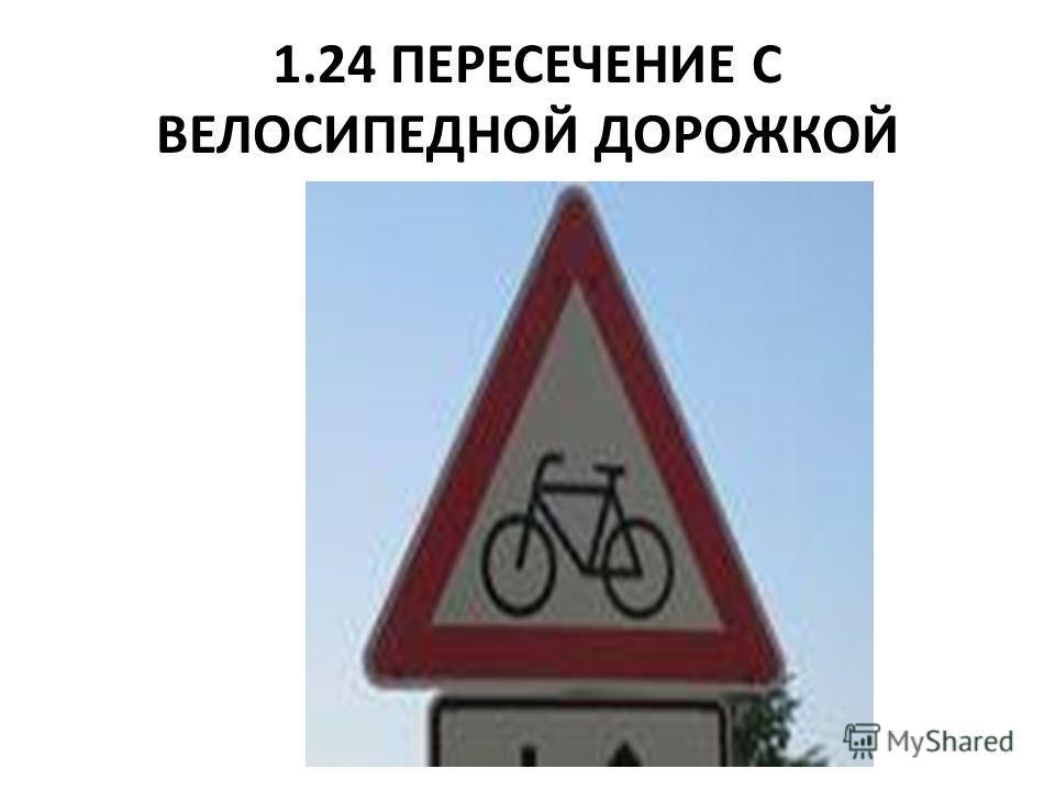 1.24 ПЕРЕСЕЧЕНИЕ С ВЕЛОСИПЕДНОЙ ДОРОЖКОЙ