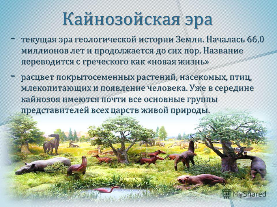 Кайнозойская эра - текущая эра геологической истории Земли. Началась 66,0 миллионов лет и продолжается до сих пор. Название переводится с греческого как « новая жизнь » - расцвет покрытосеменных растений, насекомых, птиц, млекопитающих и появление че