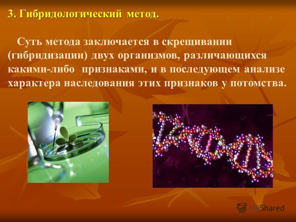3. Гибридологический метод. Суть метода заключается в скрещивании (гибридизации) двух организмов, различающихся какими-либо признаками, и в последующем анализе характера наследования этих признаков у потомства.