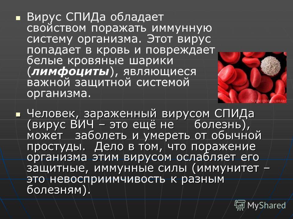 Вирус СПИДа обладает свойством поражать иммунную систему организма. Этот вирус попадает в кровь и повреждает белые кровяные шарики (лимфоциты), являющиеся важной защитной системой организма. Человек, зараженный вирусом СПИДа (вирус ВИЧ – это ещё не б