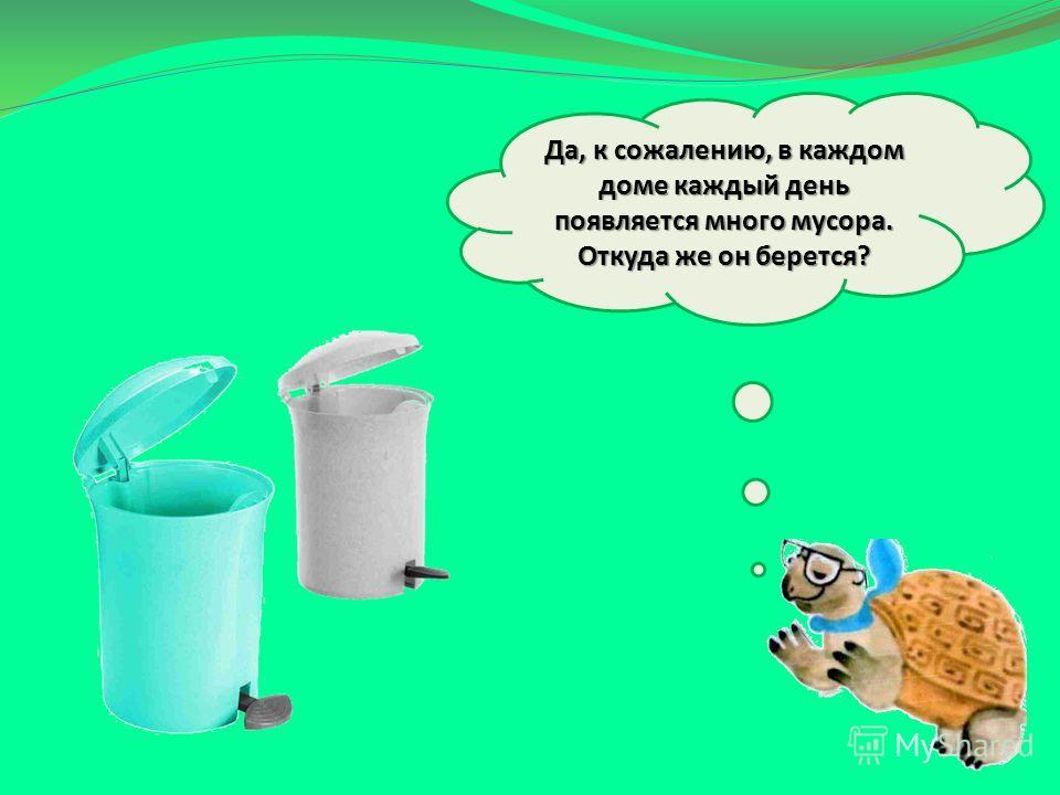 Да, к сожалению, в каждом доме каждый день появляется много мусора. Откуда же он берется?