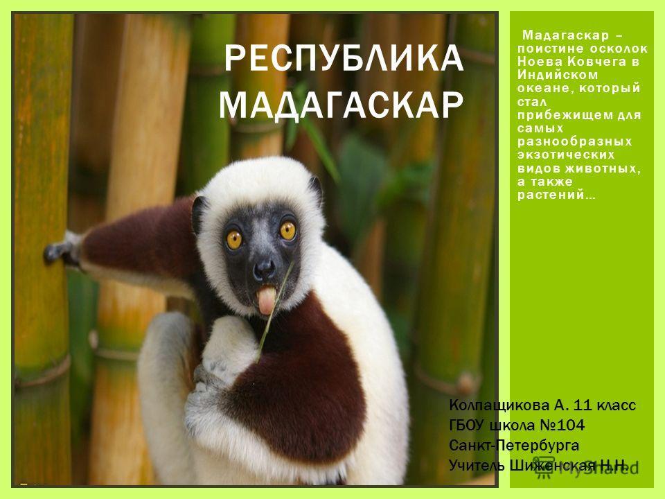 Мадагаскар – поистине осколок Ноева Ковчега в Индийском океане, который стал прибежищем для самых разнообразных экзотических видов животных, а также растений… РЕСПУБЛИКА МАДАГАСКАР Колпащикова А. 11 класс ГБОУ школа 104 Санкт-Петербурга Учитель Шижен
