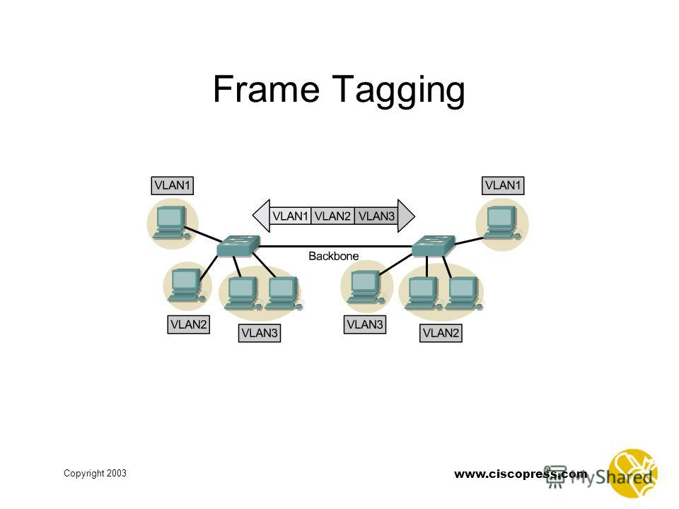 www.ciscopress.com Copyright 2003 Frame Tagging