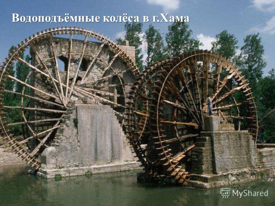 Водоподъёмные колёса в г. Хама