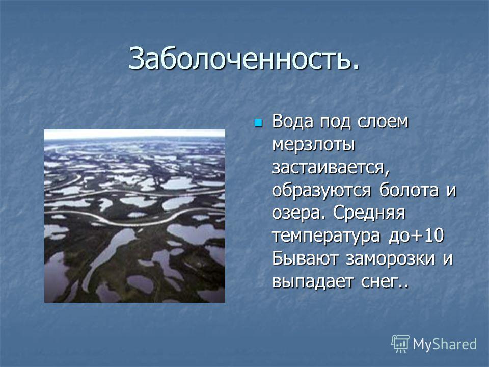 Заболоченность. Вода под слоем мерзлоты застаивается, образуются болота и озера. Средняя температура до+10 Бывают заморозки и выпадает снег.. Вода под слоем мерзлоты застаивается, образуются болота и озера. Средняя температура до+10 Бывают заморозки
