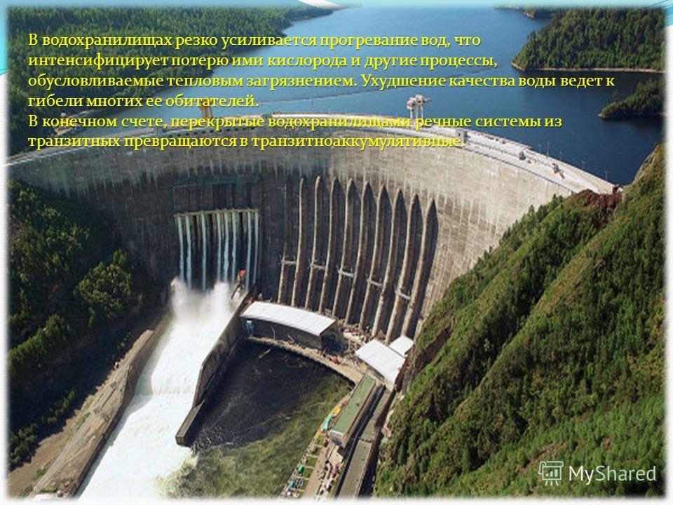 В водохранилищах резко усиливается прогревание вод, что интенсифицирует потерю ими кислорода и другие процессы, обусловливаемые тепловым загрязнением. Ухудшение качества воды ведет к гибели многих ее обитателей. В конечном счете, перекрытые водохрани