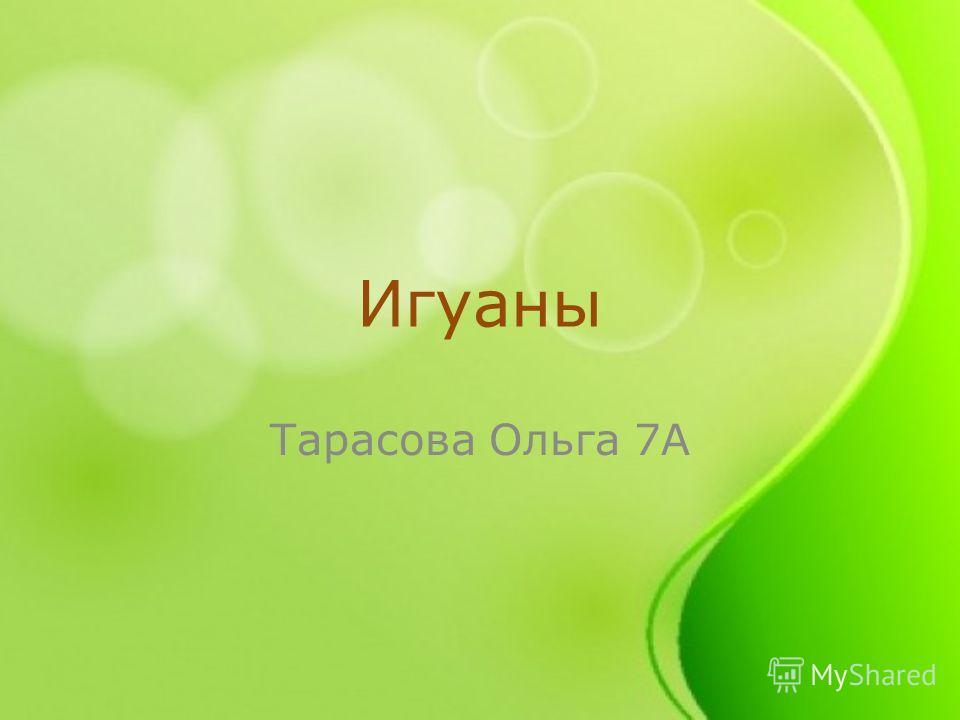 Игуаны Тарасова Ольга 7А