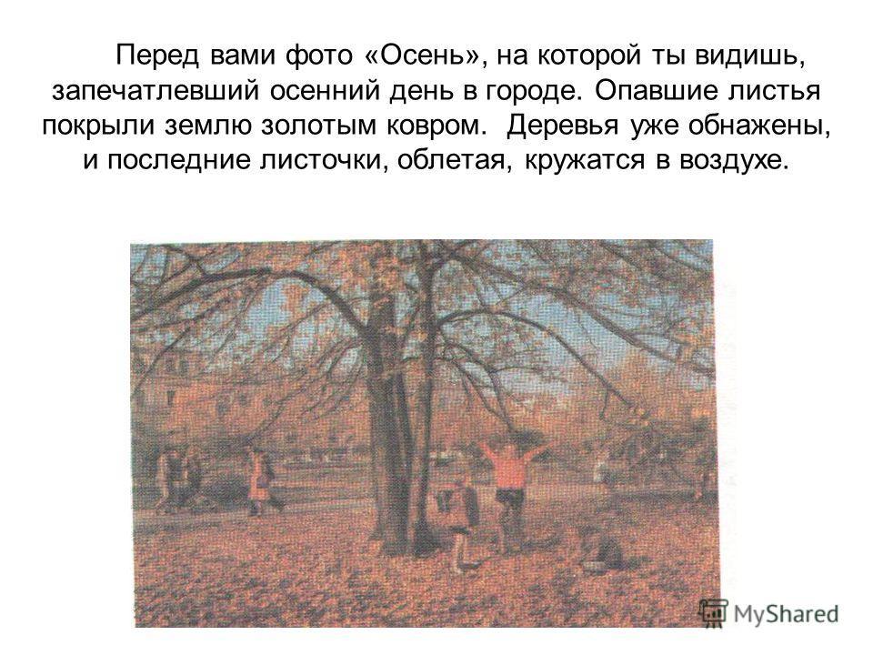 Перед вами фото «Осень», на которой ты видишь, запечатлевший осенний день в городе. Опавшие листья покрыли землю золотым ковром. Деревья уже обнажены, и последние листочки, облетая, кружатся в воздухе.
