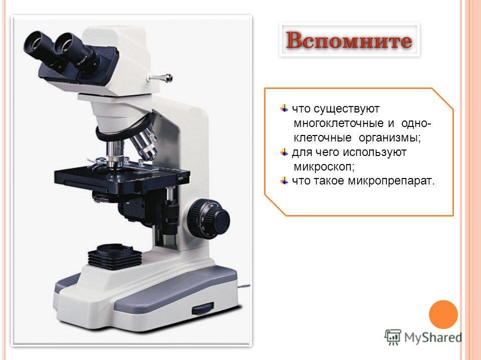 что существуют многоклеточные и одно- клеточные организмы; для чего используют микроскоп; что такое микропрепарат.