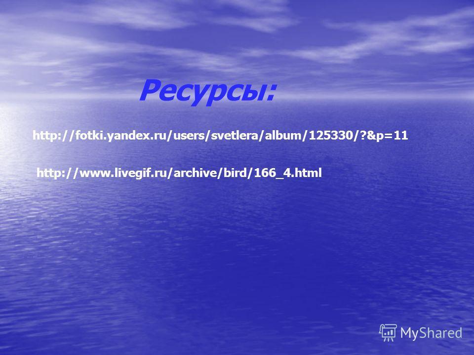 Ресурсы: http://fotki.yandex.ru/users/svetlera/album/125330/?&p=11 http://www.livegif.ru/archive/bird/166_4.html