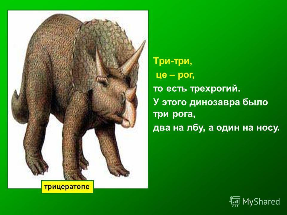 трицератопс Три-три, це – рог, то есть трехрогий. У этого динозавра было три рога, два на лбу, а один на носу.