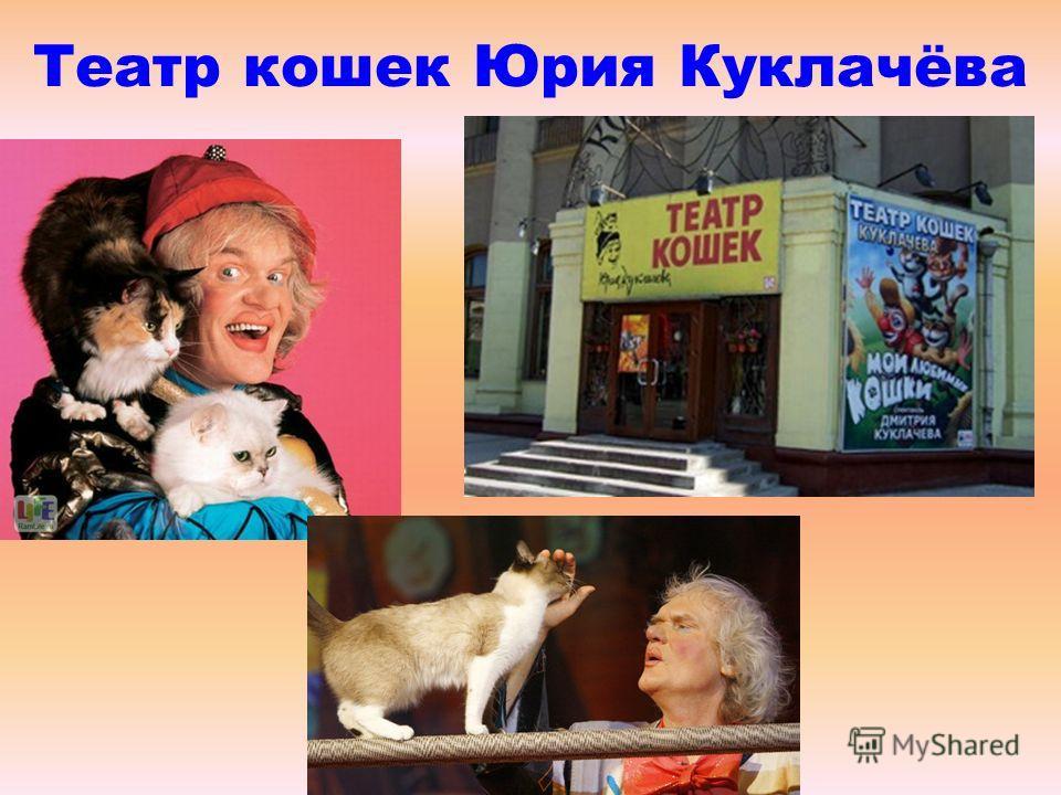 Театр кошек Юрия Куклачёва