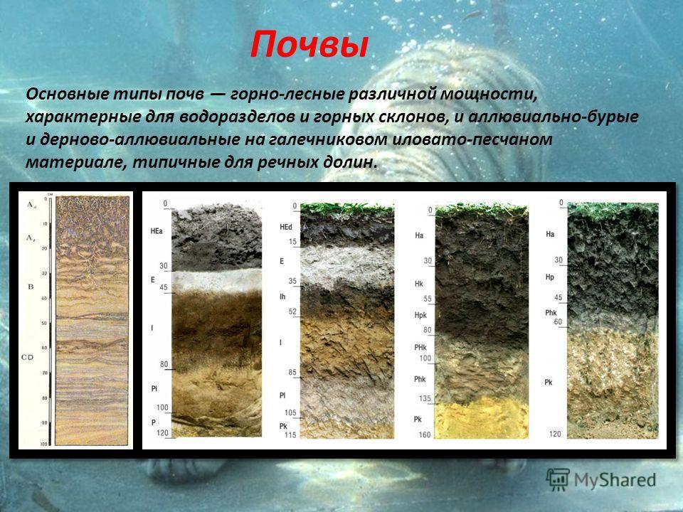Почвы Основные типы почв горно-лесные различной мощности, характерные для водоразделов и горных склонов, и аллювиально-бурые и дерново-аллювиальные на галечниковом иловато-песчаном материале, типичные для речных долин.