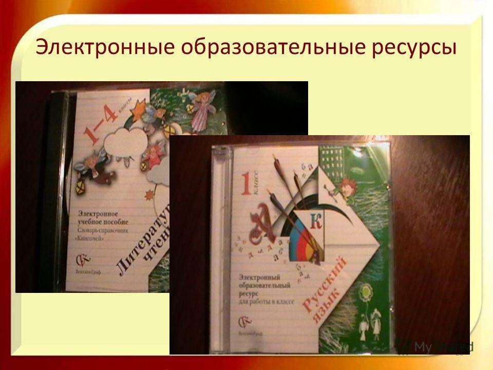 Электронные образовательные ресурсы 25
