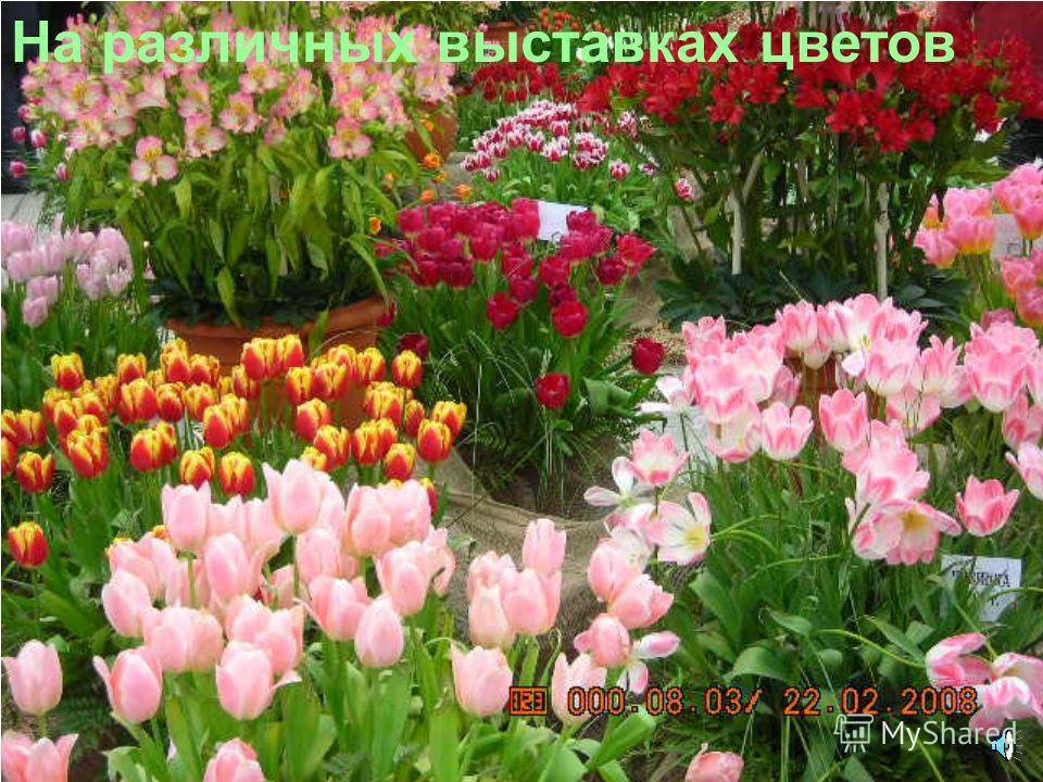 Цветы выставляют на ВДНХ