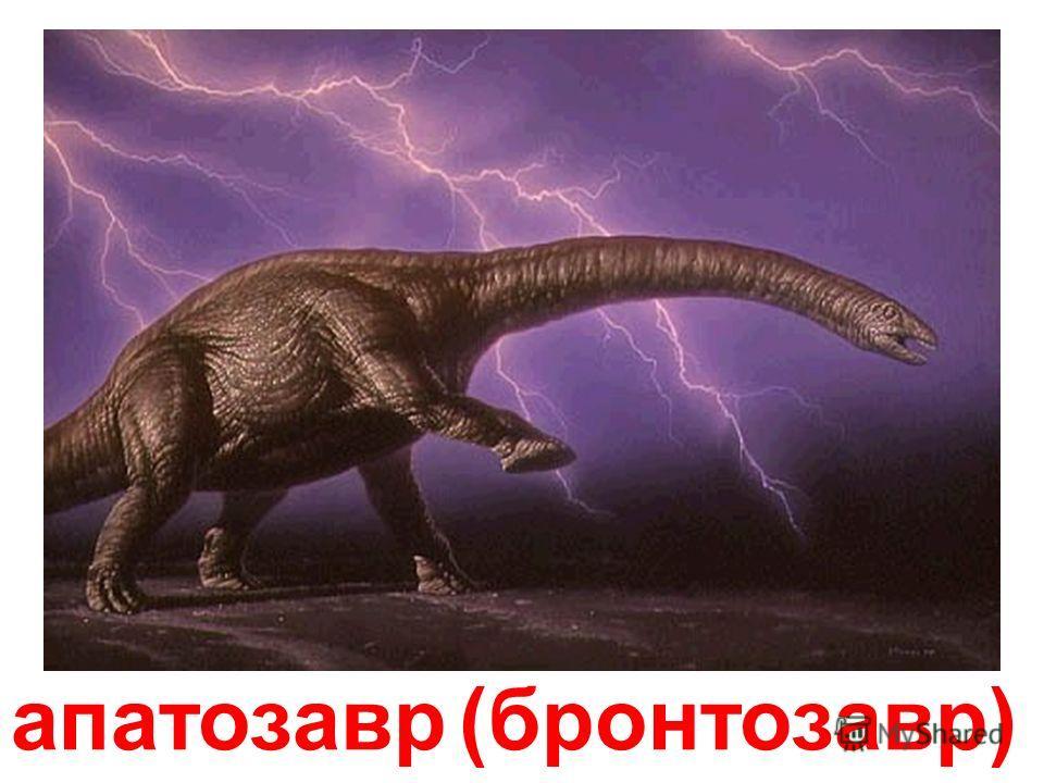 анкілозавр