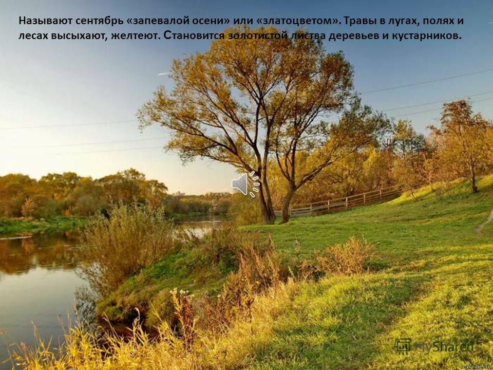 Вот и кончилось теплое лето, но на смену ему приходит осень. Первый осенний месяц называется сентябрь. Вот и закончилось теплое лето. Н а смену ему приходит осень.