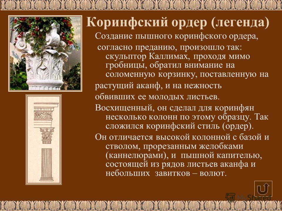 Создание пышного коринфского ордера, согласно преданию, произошло так: скульптор Каллимах, проходя мимо гробницы, обратил внимание на соломенную корзинку, поставленную на растущий аканф, и на нежность обвивших ее молодых листьев. Восхищенный, он сдел