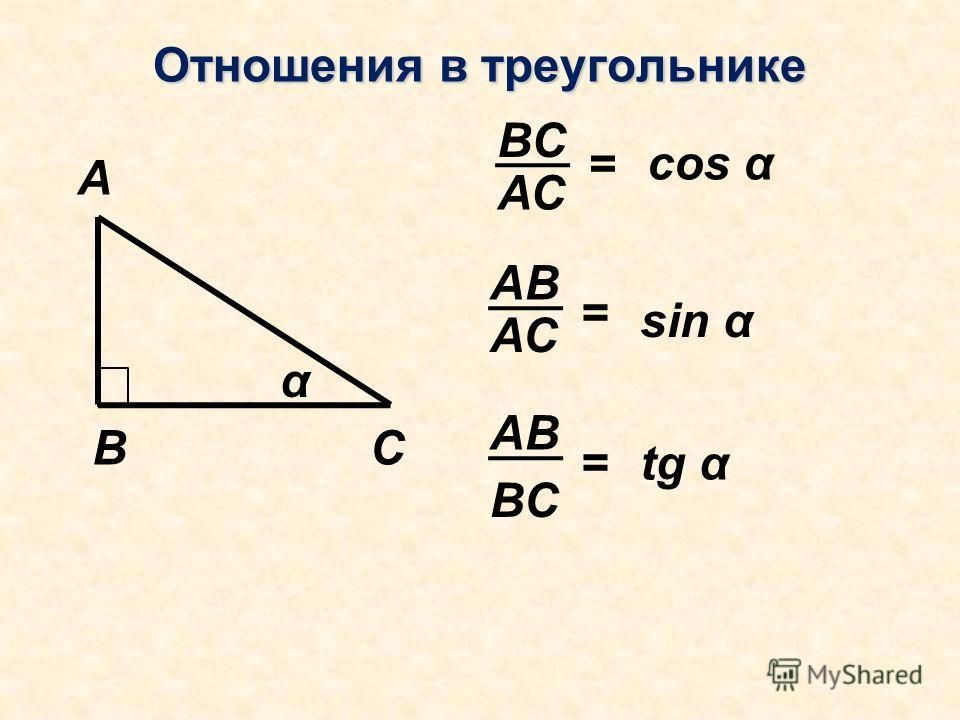 Отношения в треугольнике А ВС α АС ВС = АС АВ = ВС = cos α sin α tg α