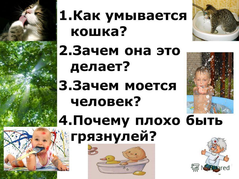 Free Powerpoint Templates Page 4 1. Как умывается кошка? 2. Зачем она это делает? 3. Зачем моется человек? 4. Почему плохо быть грязнулей?