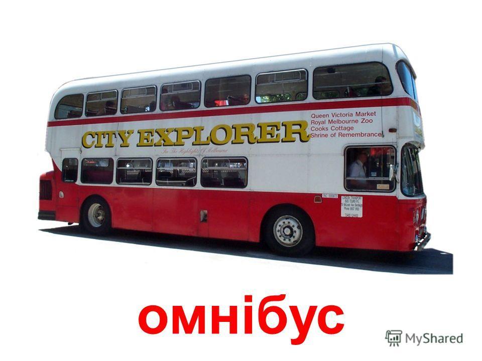 Автобус автобус