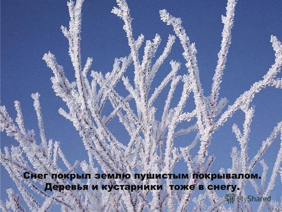 Дни зимой еще короче, чем осенью. Солнце редко выглядывает из- за туч и греет землю.