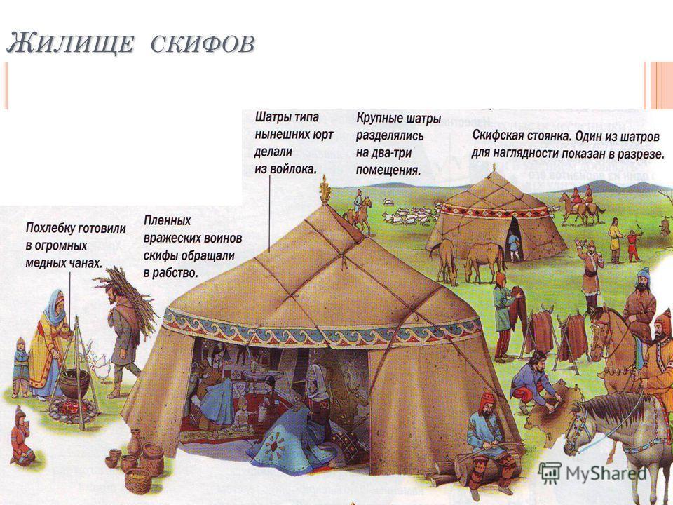 Ж ИЛИЩЕ СКИФОВ