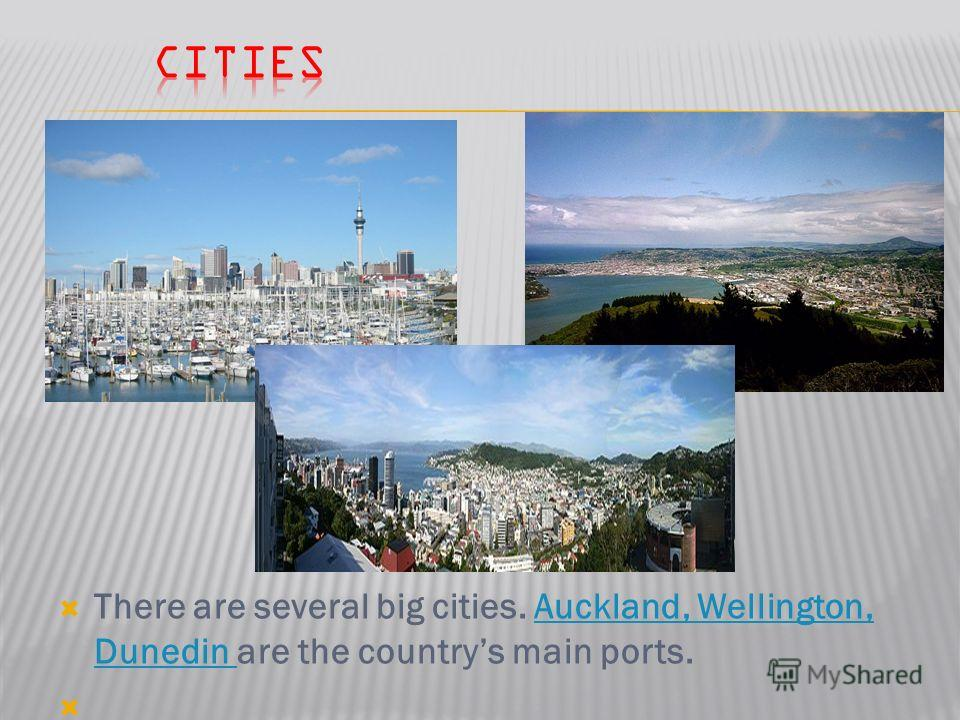 There are several big cities. Auckland, Wellington, Dunedin are the countrys main ports.Auckland, Wellington, Dunedin