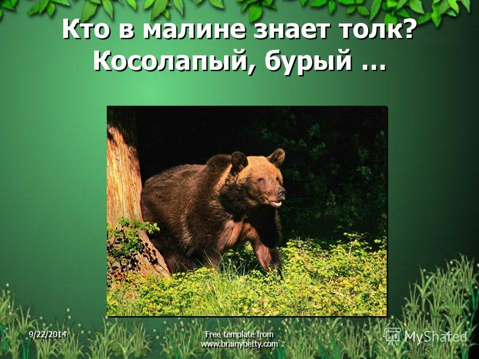 Кто в малине знает толк? Косолапый, бурый … 9/22/2014Free template from www.brainybetty.com 4