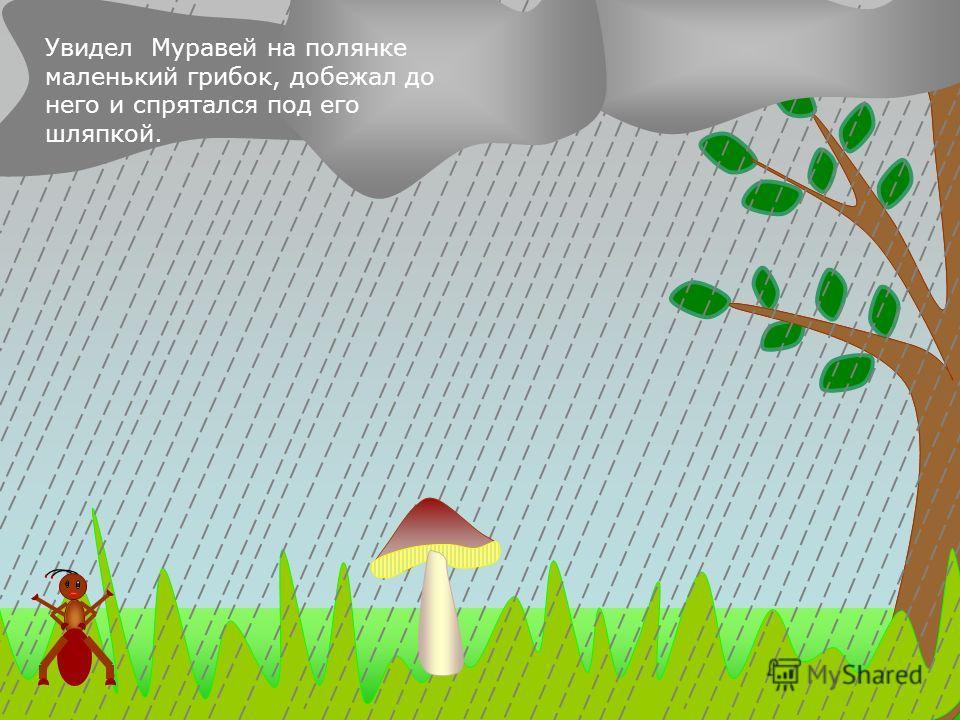 Как-то раз полил сильный дождь. А Муравей не успел добежать до своего домика. Куда спрятаться?