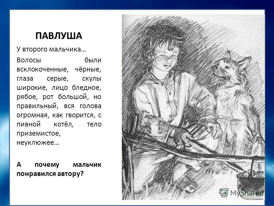 russkomu-yaziku-sochinenie-pro-pavlushu-iz-rasskaza-bezhin-lug