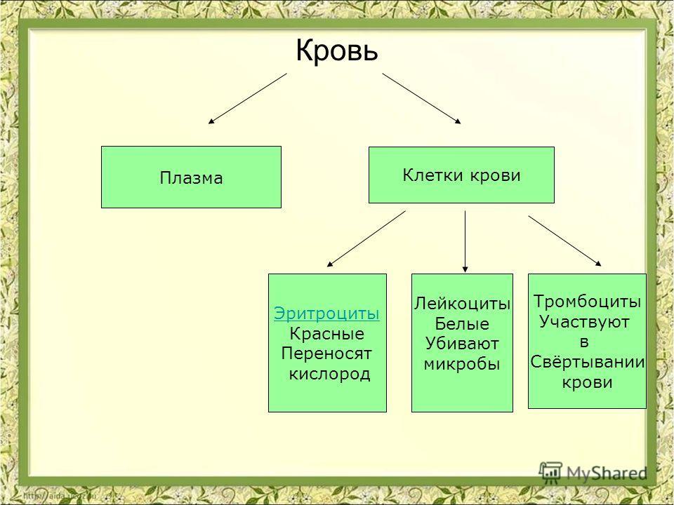 Кровь _____________ (жидкая часть) ______________ _____ (цвет) ______ (функции) _____ (цвет) ______ (функции) Тромбоциты ______ (функции)