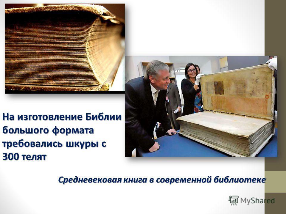 Средневековая книга в современной библиотеке На изготовление Библии большого формата требовались шкуры с 300 телят