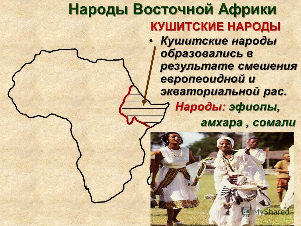 Народы Восточной Африки КУШИТСКИЕ НАРОДЫ Кушитские народы образовались в результате смешения европеоидной и экваториальной рас.Кушитские народы образовались в результате смешения европеоидной и экваториальной рас. Народы: эфиопы, Народы: эфиопы, амха