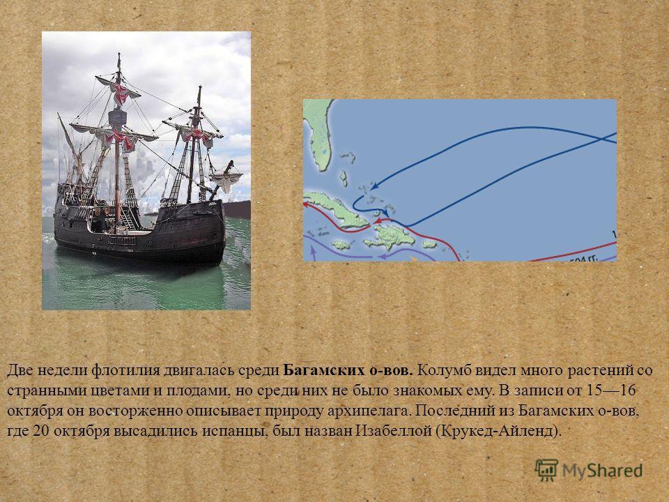 Две недели флотилия двигалась среди Багамских о-вов. Колумб видел много растений со странными цветами и плодами, но среди них не было знакомых ему. В записи от 1516 октября он восторженно описывает природу архипелага. Последний из Багамских о-вов, гд