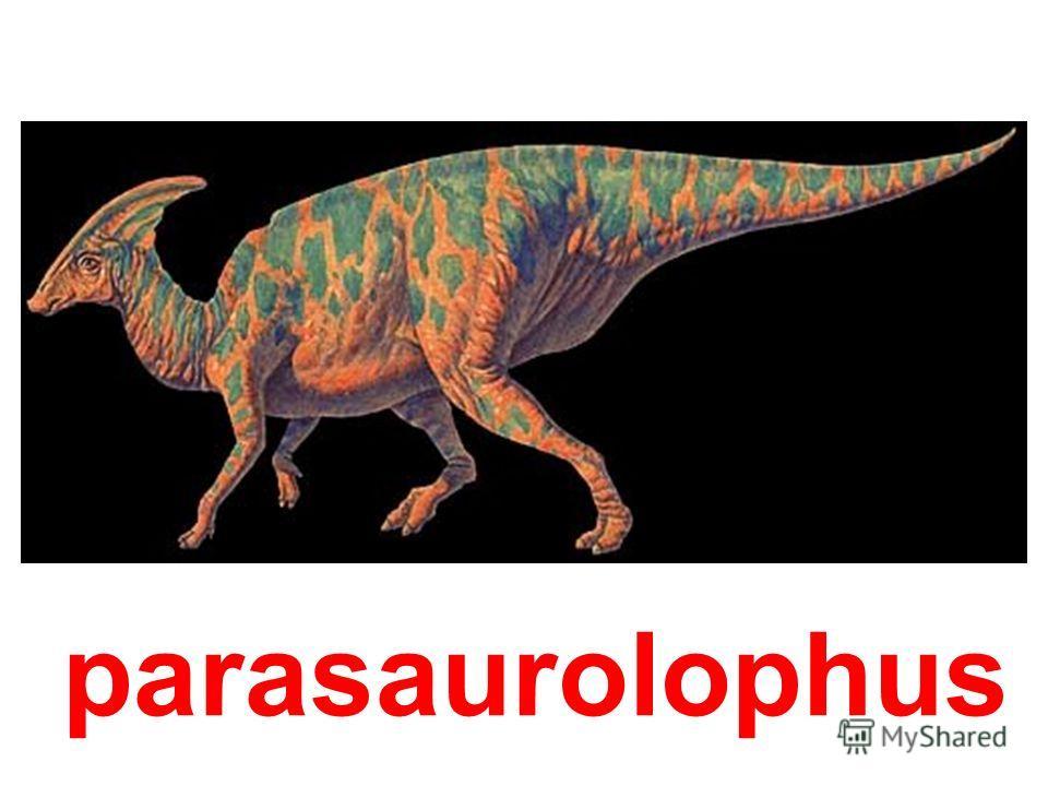 oftalmosaurus