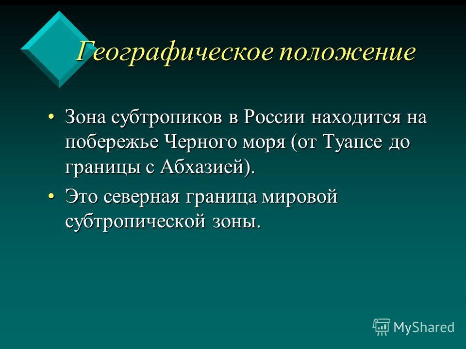 Географическое положение Географическое положение Зона субтропиков в России находится на побережье Черного моря (от Туапсе до границы с Абхазией).Зона субтропиков в России находится на побережье Черного моря (от Туапсе до границы с Абхазией). Это сев